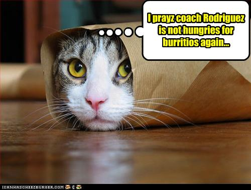 DangerBurritoCat