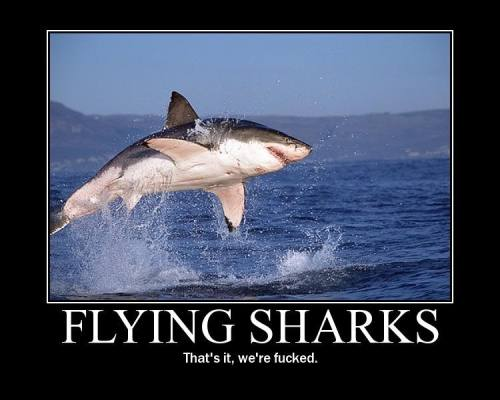 flying_shark